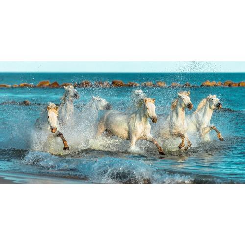 Infraobraz Koně v moři 120x60cm (600W)