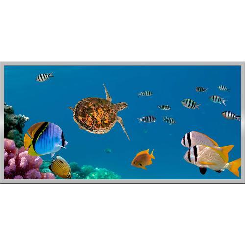 Infraobraz Mořské ryby 120x60cm (600W)