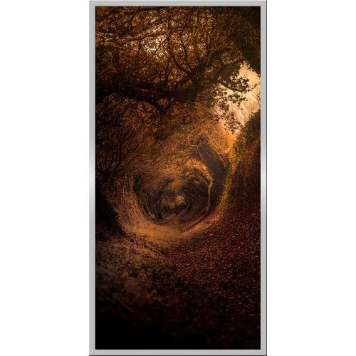 Infraobraz Lesní cesta 60x120cm (600W)