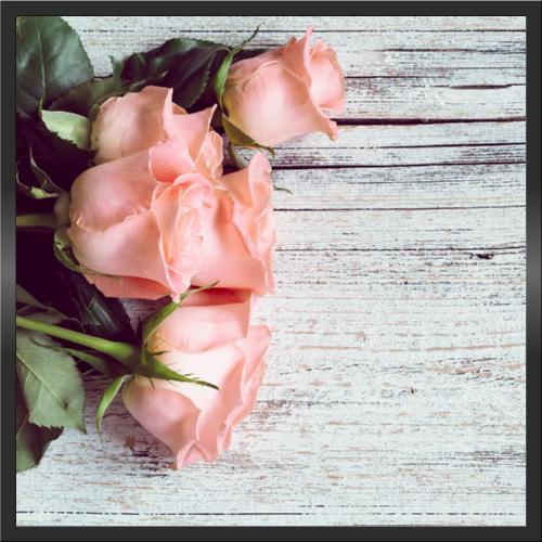 Infraobraz Růže 1 60x60cm (300W)